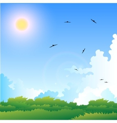 a summer vector image vector image