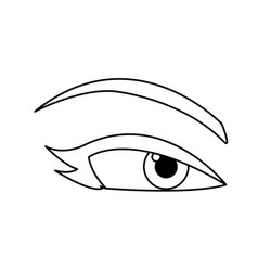 Woman eye eyebrows eyelashes outline vector