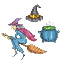 Witch character with halloween sorceress elements vector