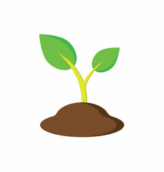 Plant in the ground vector