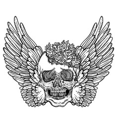 Line art of angel wings scary skull vector