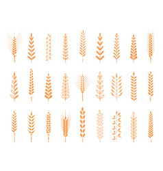 Agricultural symbols isolated on white background vector