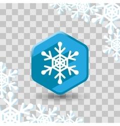 Snowflake flat icon vector image