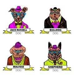 Hipster animals set dog large group of dog breeds vector