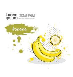 banana hand drawn watercolor fruit on white vector image vector image