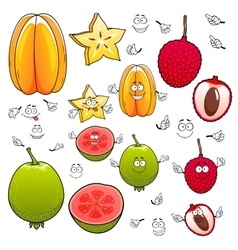 Cartoon carambola lychee and apple guava fruits vector