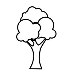 natural tree plant icon vector image vector image