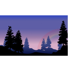 silhouette of spruce with rainbow beauty scenery vector image