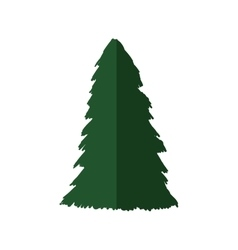 Pine tree nature design graphic vector