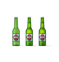 beer bottles objects isolated realistic vector image