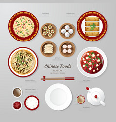 Infographic China foods business flat lay idea vector image vector image
