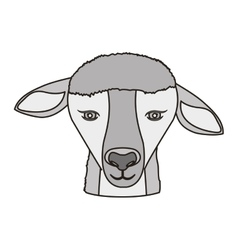 Lamb face icon vector