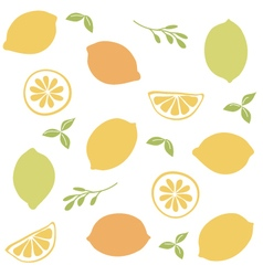Seamless pattern with citrus fruit clices vector image vector image