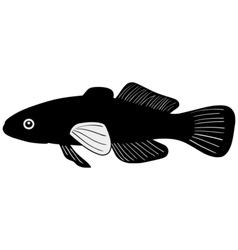 Silhouette of gudgeon vector image vector image