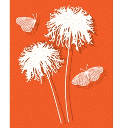 Chrysanthemum on orange vector