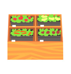 Supermarket shelves with ruits and vegetables vector