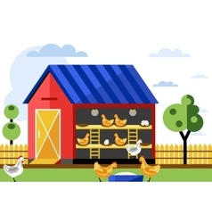 Chicken farm vector