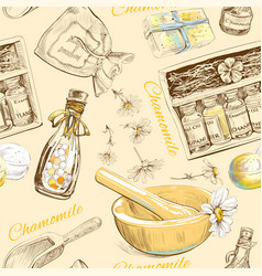 Chamomile cosmetic pattern vector