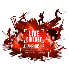 batsman and bowler playing cricket championship vector image