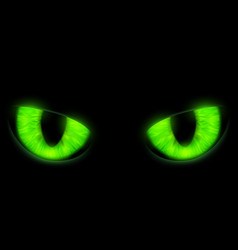 green cats eyes isolated on a black background vector image vector image