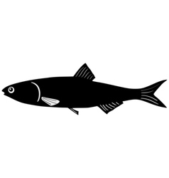 Silhouette of anchovy vector image