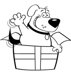 Cartoon dog inside a gift box vector image vector image