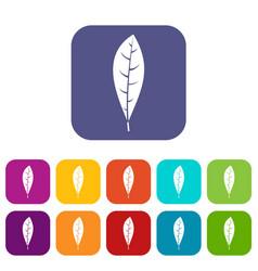 Leaf icons set flat vector