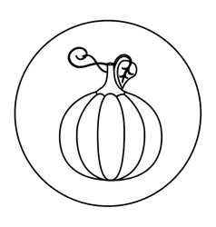 Silhouette circular shape with pumpkin vegetable vector