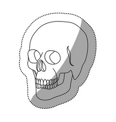 White figure skeleton of the human skull icon vector