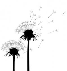 Dandelion vector