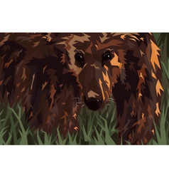Grizzly vector image