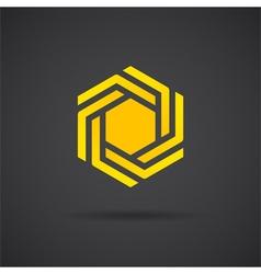 Hexagonal design element vector