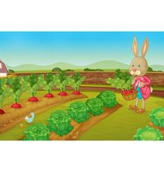 Rabbit picking vegies vector image