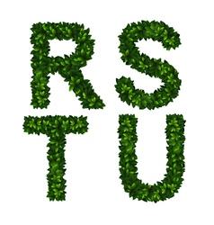 Alphabet rstu vector image vector image