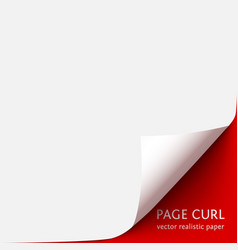 curled corner of paper with shadow on red vector image