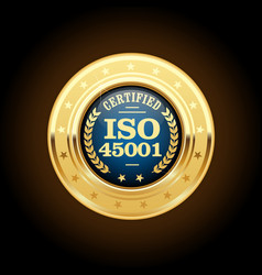 Iso 45001 standard medal - occupational health and vector