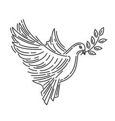 pigeon of peace with an olive branch in its beak vector image