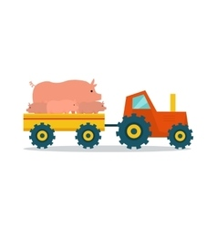 Domestic animals carriage vector
