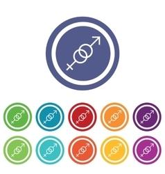 Gender symbols signs colored set vector