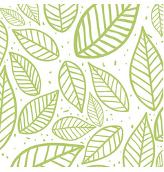 Beautiful green leaves background vector