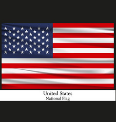 National flag of united states of america vector