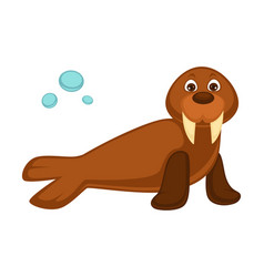 walrus baby with long fangs and pair of flippers vector image