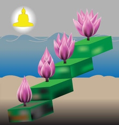 Four lotus metaphor for buddhist personal vector