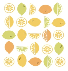 Seamless pattern with citrus fruit clices vector