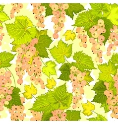 Red currant seamless pattern collection of vector