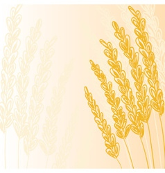 wheat doodles background1 vector image vector image