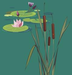blossoming bog vector image
