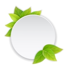 Circular paper label with green leaves vector
