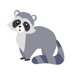 funny raccoon sitting vector image