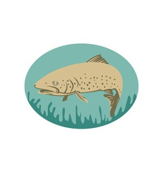 Spotted or speckled trout swimming vector